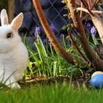 Velikonoční výstava - foto 3. - na web